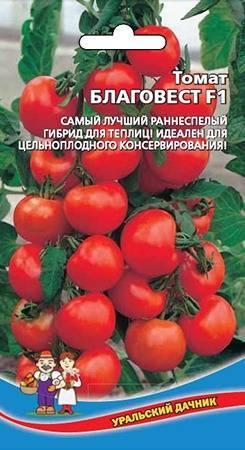 Особенности сорта и выращивание томата благовест