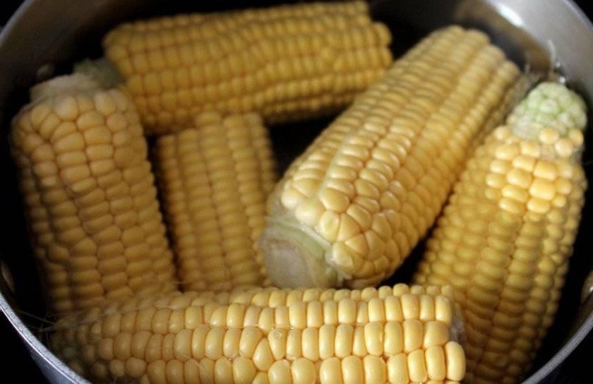 Вареная кукуруза: польза и вред для здоровья человека, калорийность