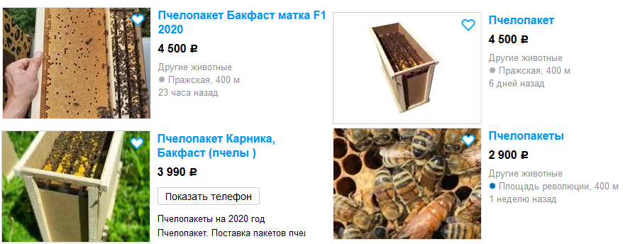 Как заменить старые пчелиные матки на молодые
