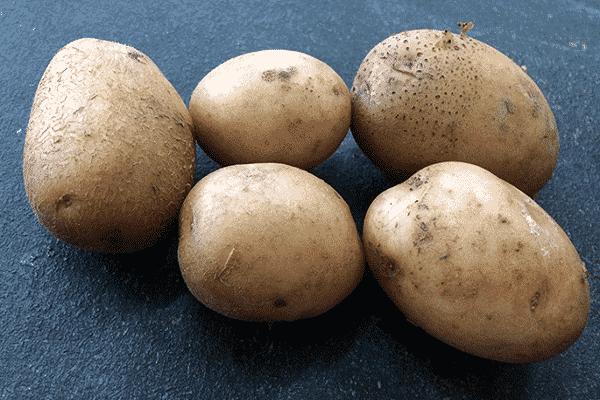 """Картофель """"пикассо"""": описание сорта,  характеристики и фото"""