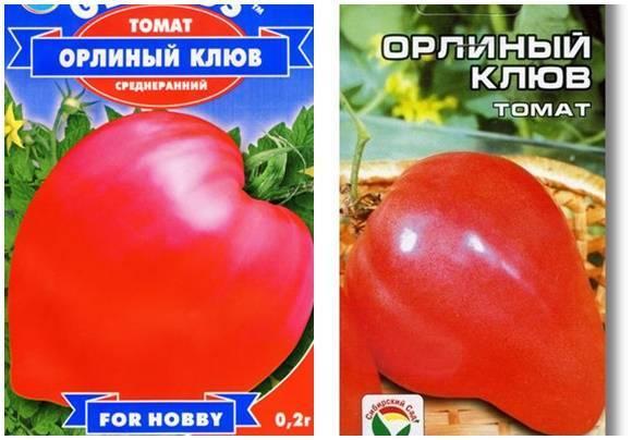 Сорт томата «орлиный клюв» – оригинальный вид и потрясающий вкус