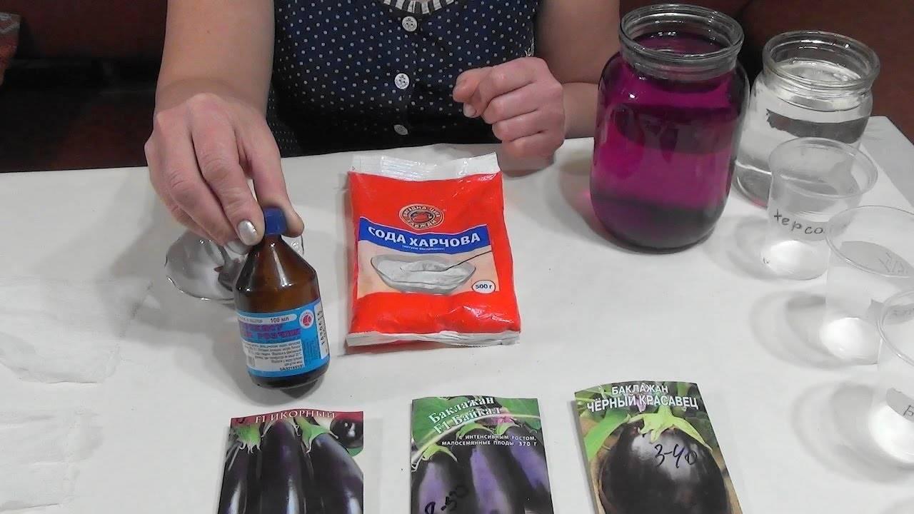 Особенности подготовки семян перца и баклажан к посеву на рассаду: когда и как правильно это делать