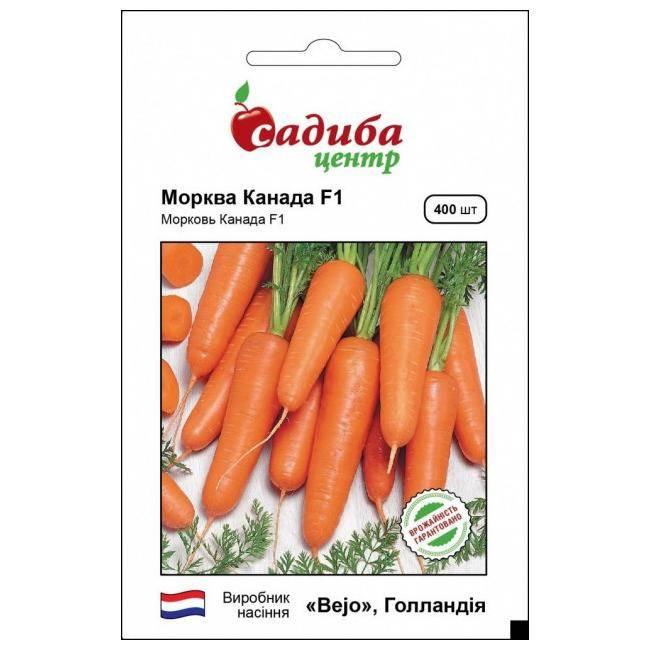 Морковь дордонь f1: отзывы, фото, описание сорта, характеристика, достоинства и недостатки, особенности выращивания