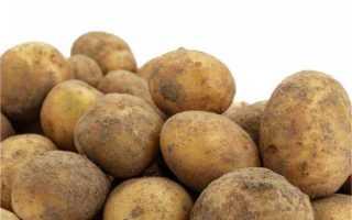 Картофель «адретта»: описание сорта, фото и отзывы