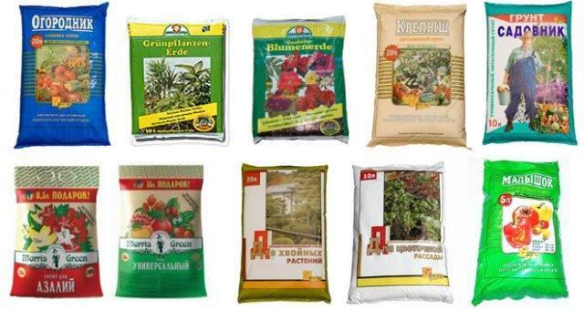 Почва для рассады томатов