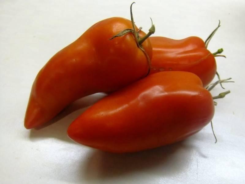 Секреты выращивания ароматных томатов бифселлер розовый f1 — подробное описание сорта