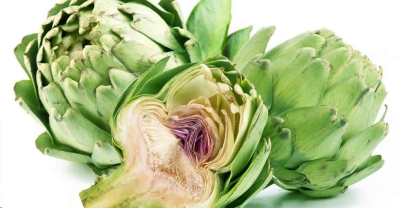 Артишок— удивительные полезные свойства и противопоказания растения, применение в лечебных целях