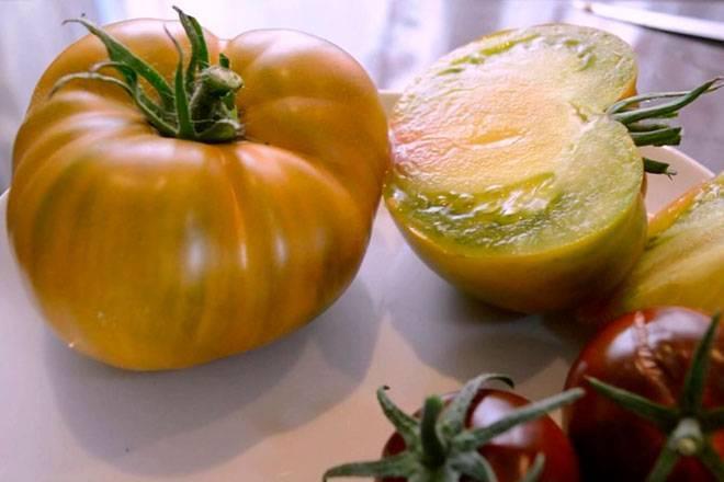 Благородный томат малахитовая шкатулка