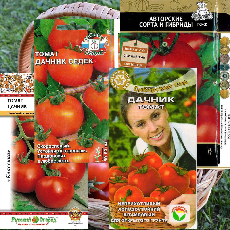 Томат дубок: подробное описание популярного сорта, правила выращивания