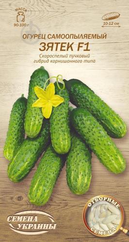 Огурец зятек: описание сорта и выращивание