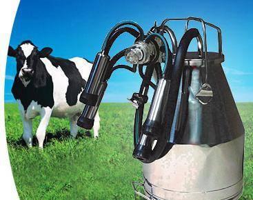 Описание доильного аппарата для коров «доюшка»