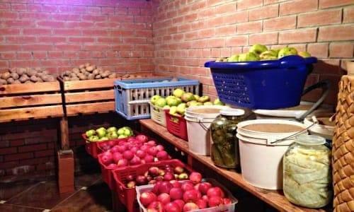 Особенности хранения яблок зимой