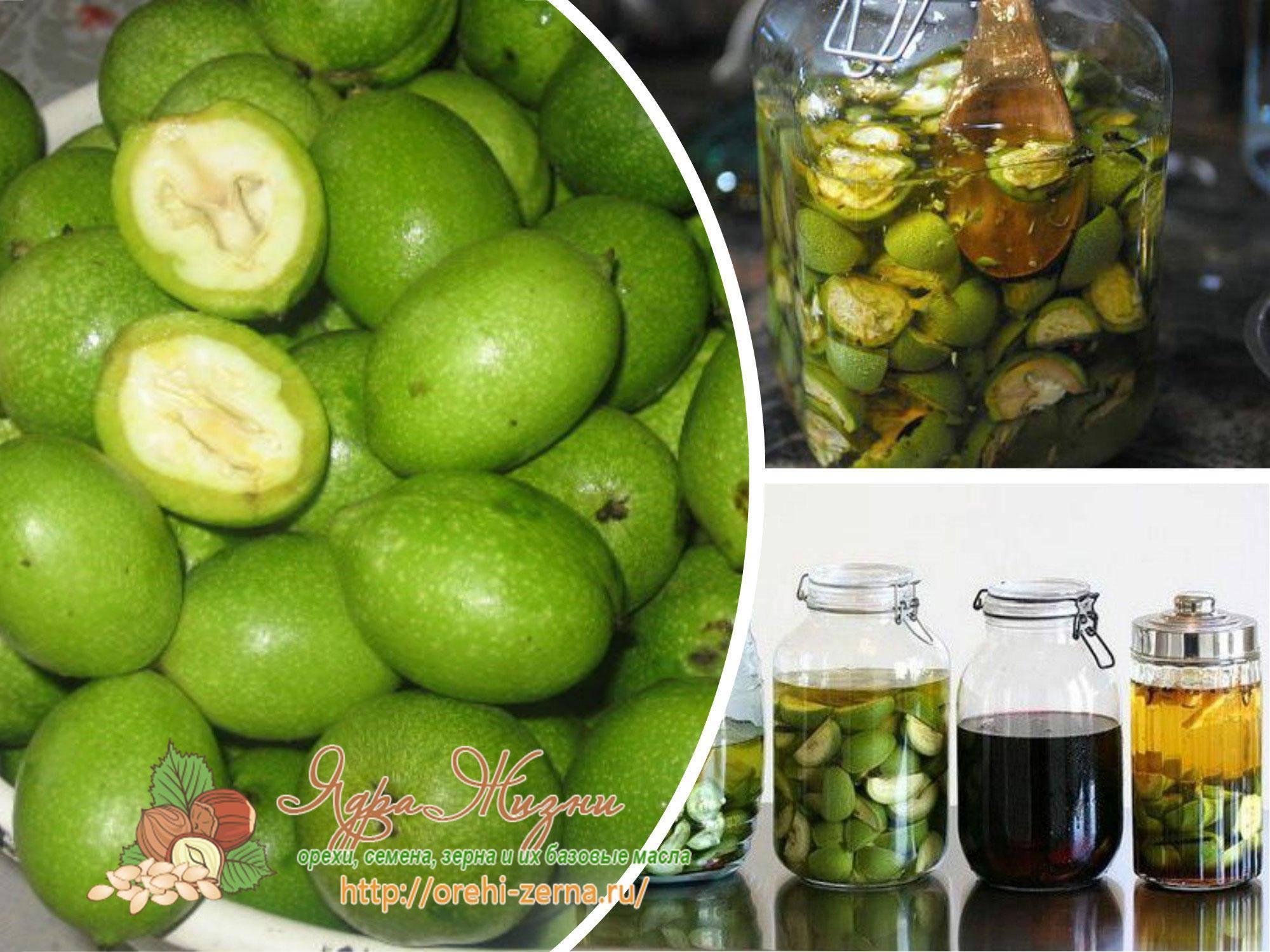 Настойка из зеленых грецких орехов на водке, спирту, керосине