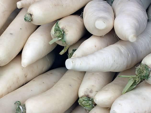 Особенности выращивания дайкона. когда сажать семена редьки в открытый грунт?