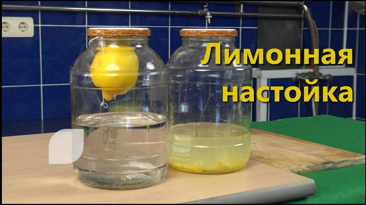 Настойка на жимолости: на водке, спирту, самогоне