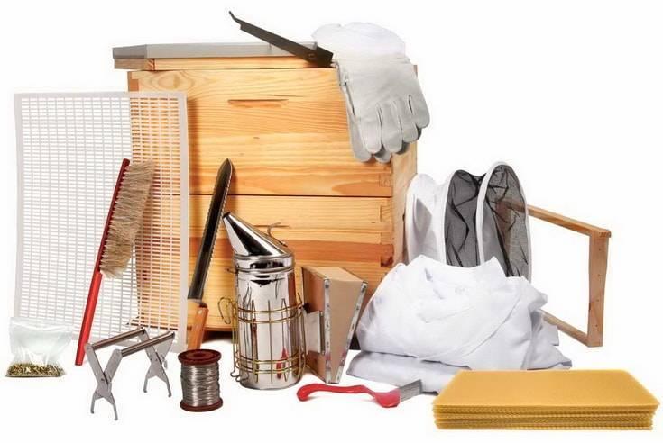 Пчеловодство: бизнес план пасеки, выгодно или нет открывать бизнес по продаже меда