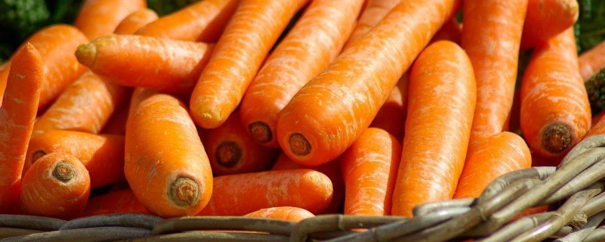 Ранние сорта моркови для пучковой продукции