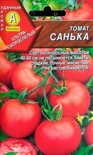 Сорт томата кибиц