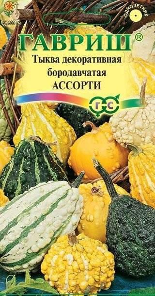 Описание сорта тыквы «россиянка»
