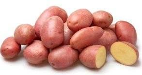 Картофель леди клер — описание сорта, фото, отзывы, посадка и уход