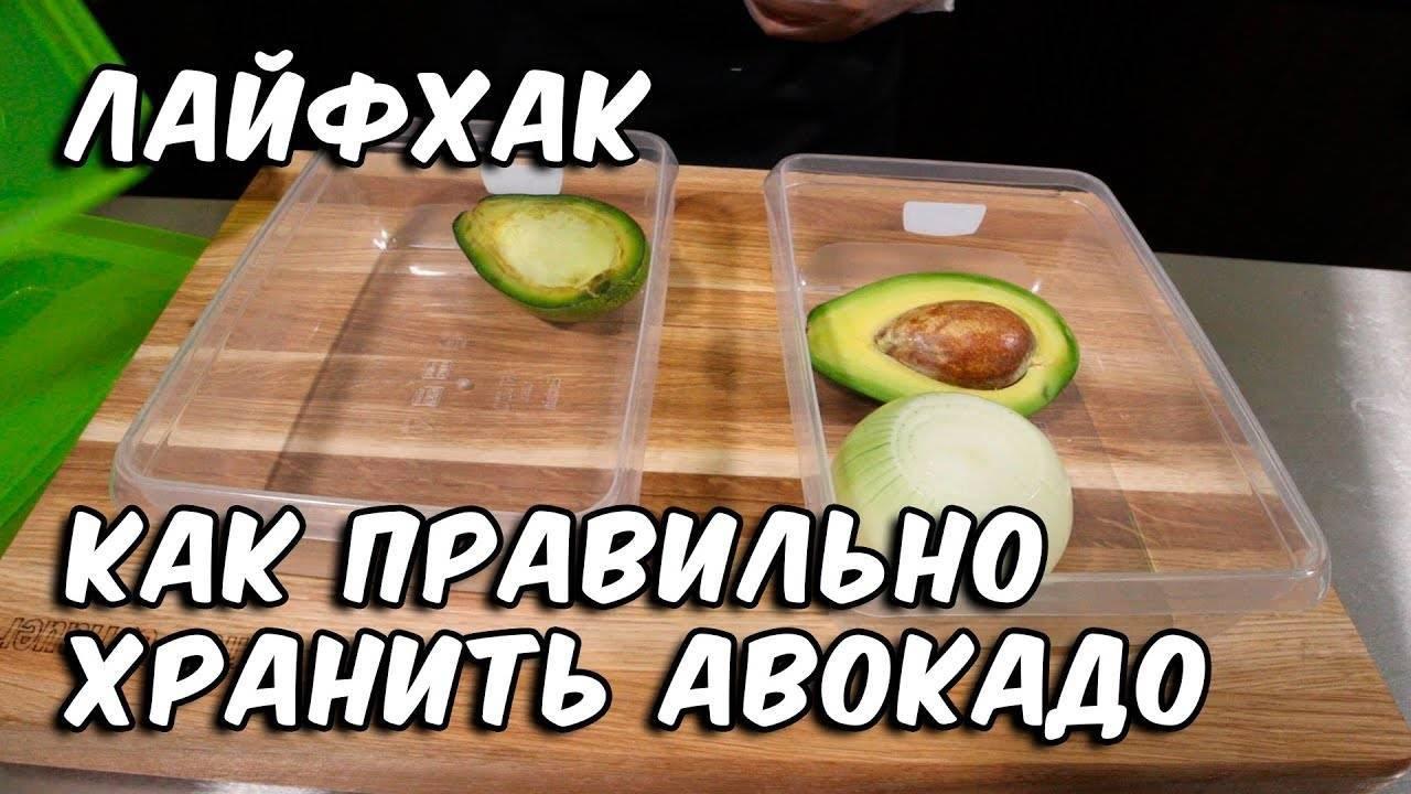 Как и где правильно хранить авокадо в домашних условиях
