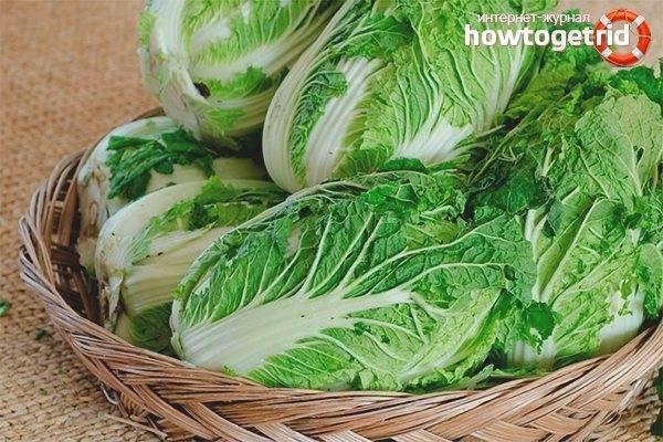 Пекинская капуста: польза и вред для здоровья, калорийность