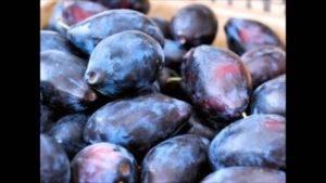 Описание слив сорта кабардинка, фото плодов