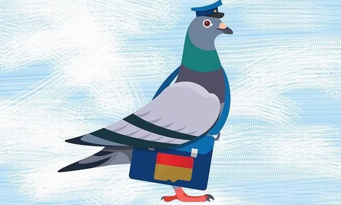 Любопытные факты из истории голубиной почты ! - «фото» » юмор дня.
