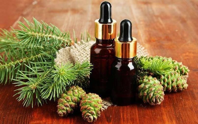 Эфирное масло пихты: свойства и применение, отзывы