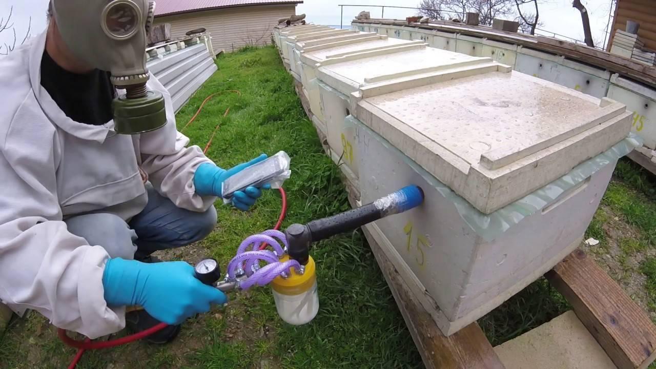 Акарапидоз у пчел лечение и профилактика
