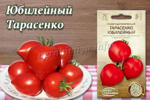 Сорт томата «тарасенко юбилейный»: описание и рекомендации по выращиванию урожайного сорта помидоров