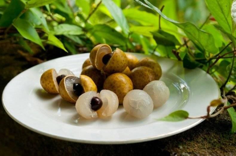 Фрукт лонган: калорийность, химический состав, польза и вред