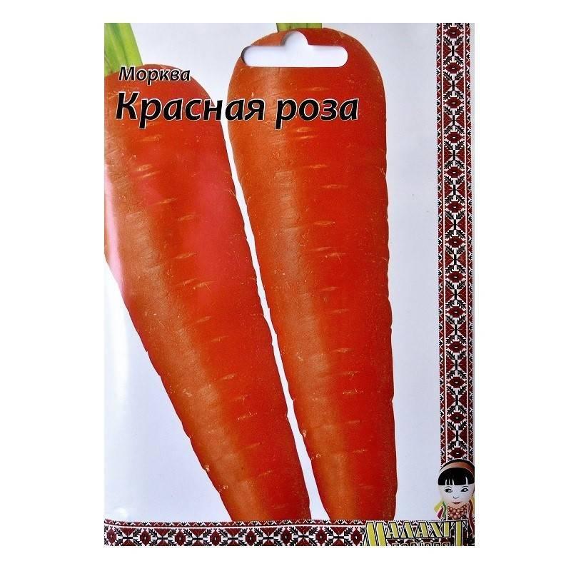 Обзор самых сладких и урожайных сортов и гибридов моркови