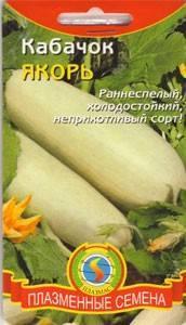 Кабачок кавили: описание сорта, фото, сроки посадки, выращивание, отзывы
