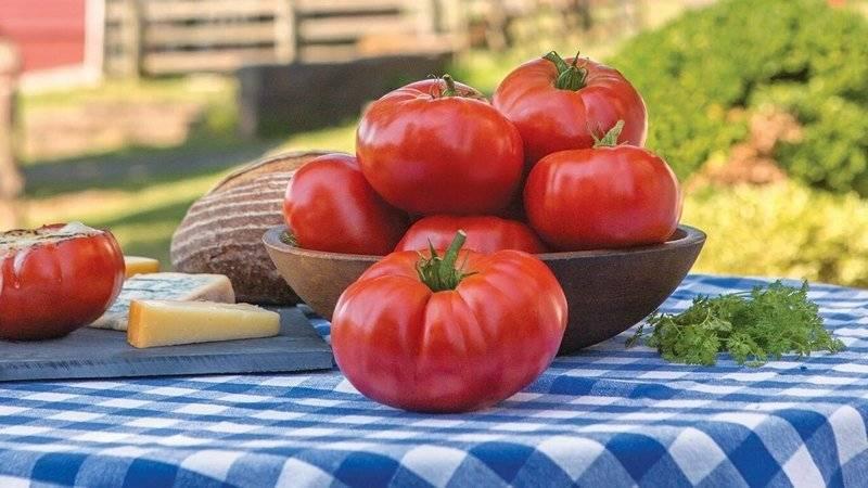 Выращивание томата марманде