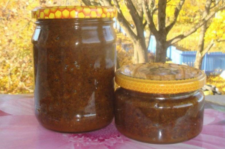 Перга пчелиная: полезные свойства, как принимать, отзывы, противопоказания