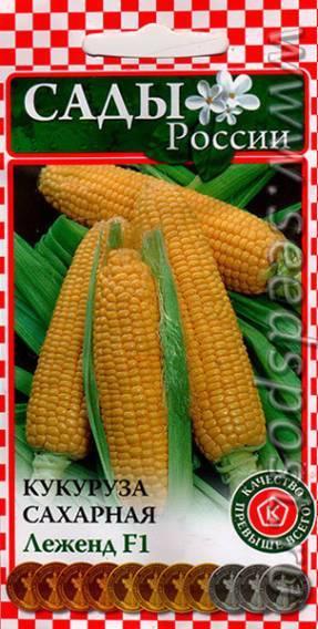 Посадка и технология выращивания сахарной кукурузы