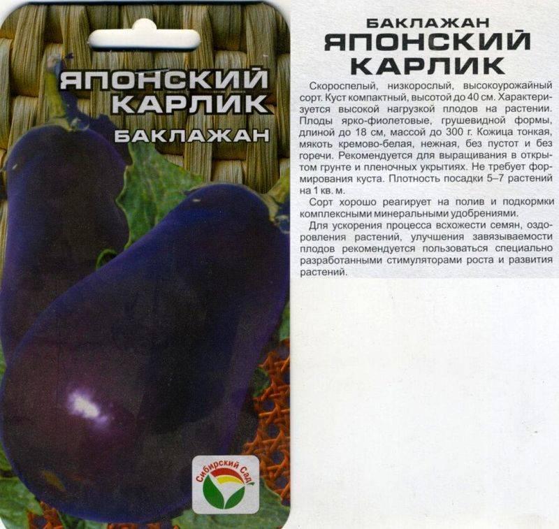 Ранние сорта баклажанов для северных регионов россии