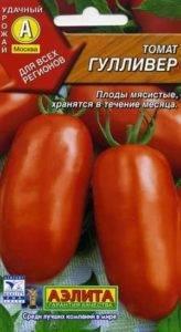 Находка для парников и теплиц - томат - гулливер - из страны помидоров
