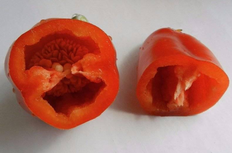 Сладкий перец «ласточка»: описание сорта и особенности выращивания