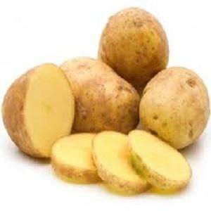 Картофель адретта: 8 особенностей и 10 советов по выращиванию и хранению