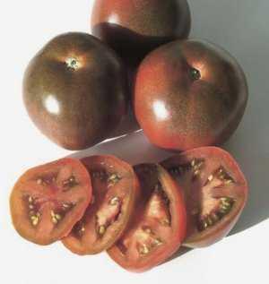 Сорт с превосходным вкусом — томат чёрный шоколад: характеристики и описание помидоров