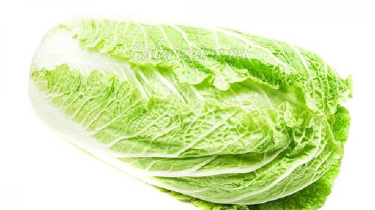 Тушеная капуста: полезные свойства и вред