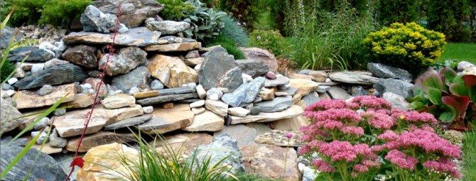 10 самых частых вопросов про альпийские горки и каменистые сады