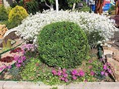 Описание и выращивание рододендрона голден лайтс