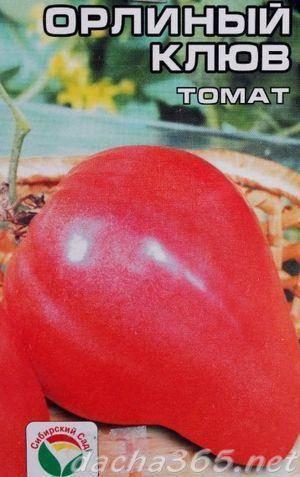 Помидор сорта «орлиный клюв»: фото, видео, отзывы, описание, характеристика, урожайность