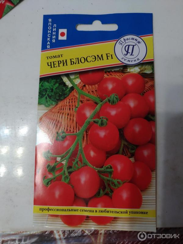 Характеристика и описание сорта томата черри блосэм f1