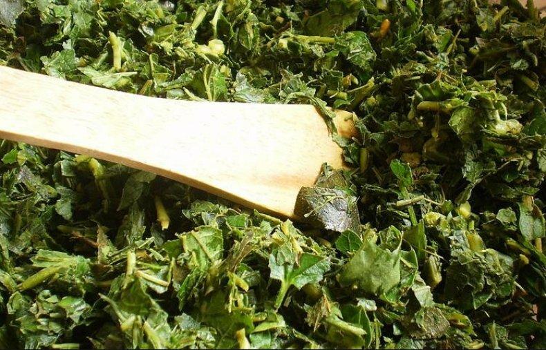 Когда собирать и как сушить листья смородины, чтобы получить качественный чай