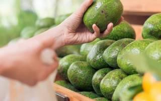 Как ускорить созревание авокадо дома