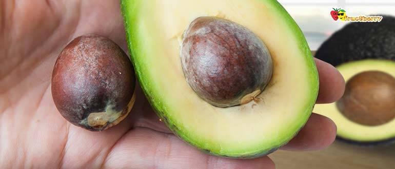 Авокадо - польза и вред для женщин. противопоказания к употреблению и рецепты